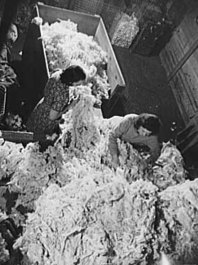 how to start cotton waste business